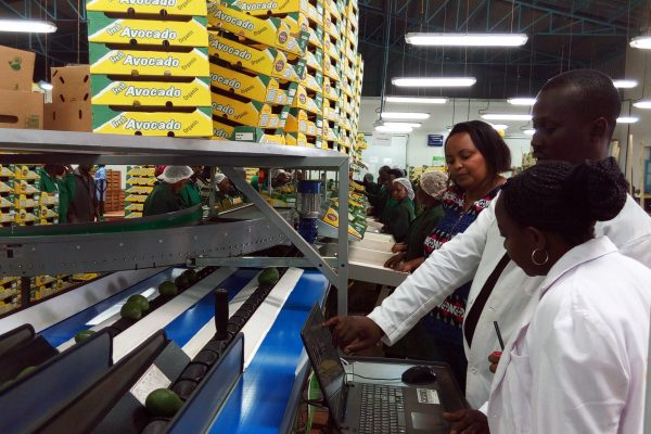 Inclusive Supply Chain Finance – From Farms in Kenya to Tables in Kansas